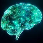 Gehirn beleuchtet